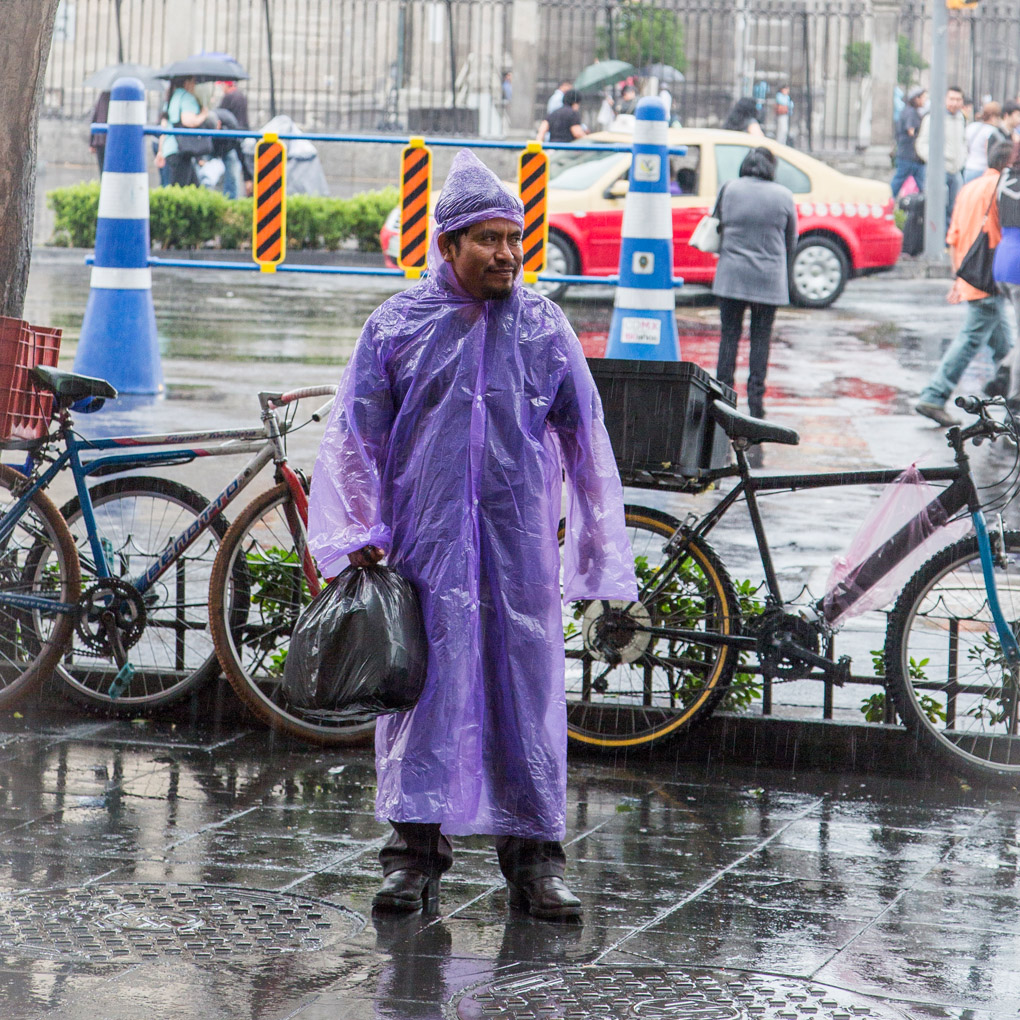 Purple Rain - Mexico City
