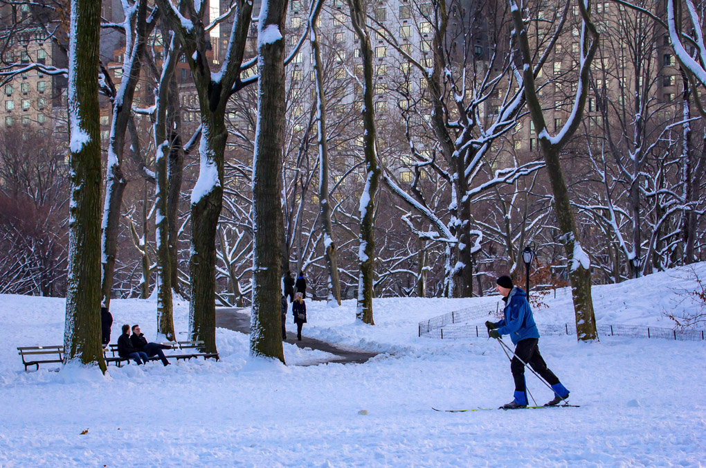 Cross Country at Central Park - New York, USA