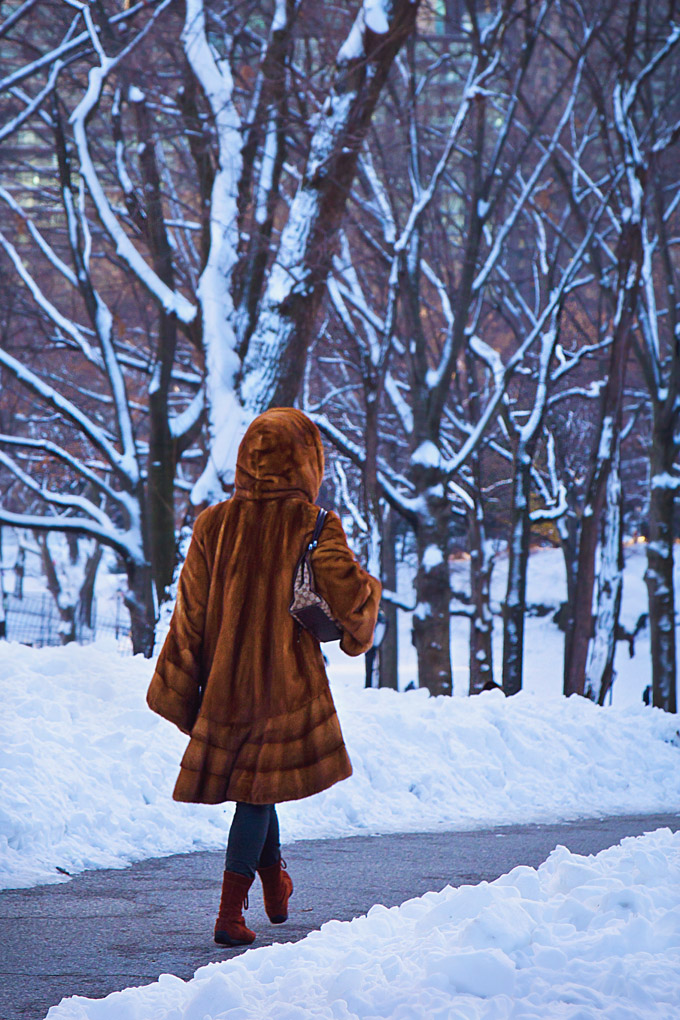Winter in the City - New York, USA