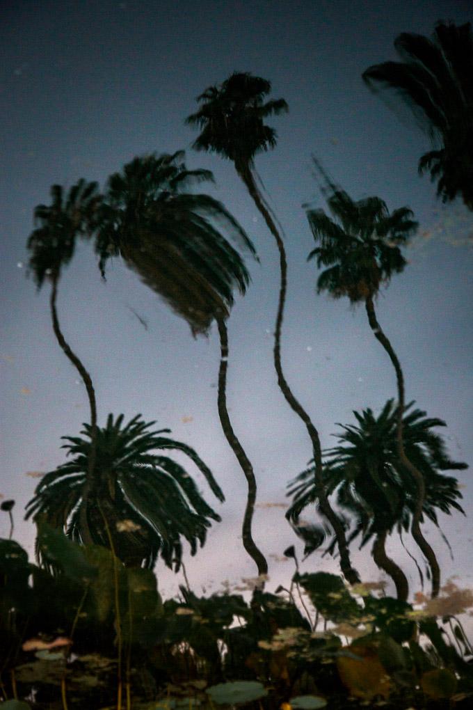 Echo Park, California, USA