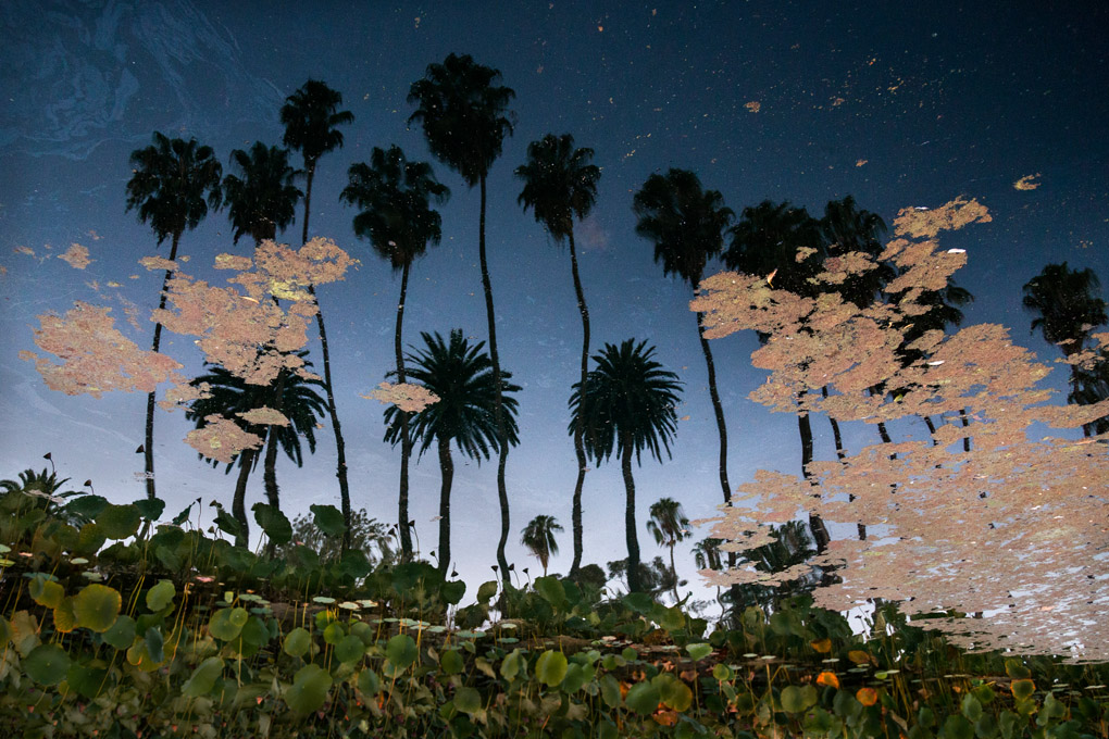 Echo Park, California, USA